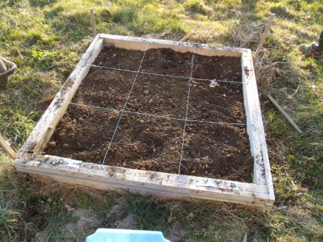 Le jardinage 2011 le petit roi enfant autiste for Pret pour terrain seul